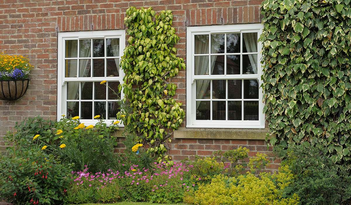 choosing to replace old windows
